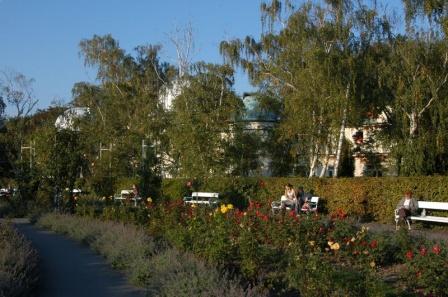Петринский парк Роз осенью