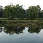 Озеро в Стромовке