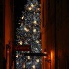 Вид на новогоднюю елку с Тынской улицы