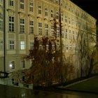 Королевский сад ночью