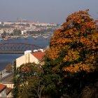 Мосты через Влтаву - вид с Вышеграда