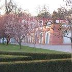 Весенние сады Тройского дворца
