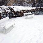 Снег в парке Роз на Петршинском холме