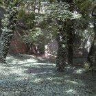 Парк в Вышеграде