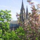 Собор св. Вита Весной